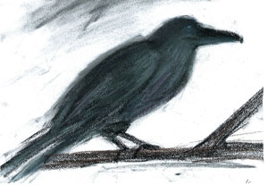 YA Author Kelly Creagh Gives Poe's Raven Some Color