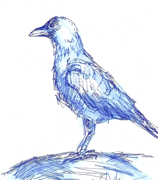 Neil Aitken Crow