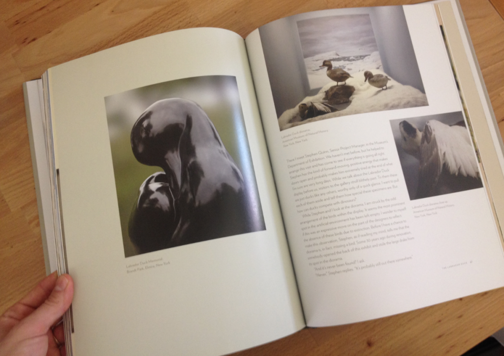 Pages from The Lost Bird Project Book by Todd McGrain