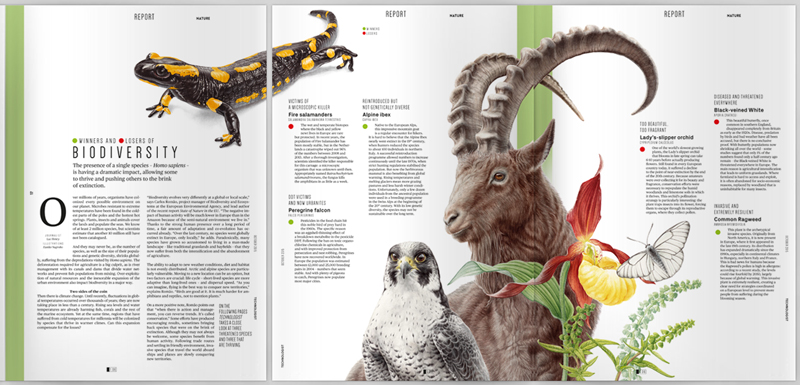 Illustrations for Technologist Magazine by Eunike Nugroho
