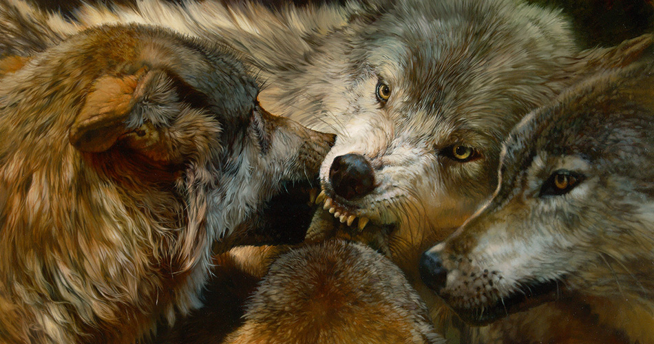"""Wolves"" by Julie Bell"