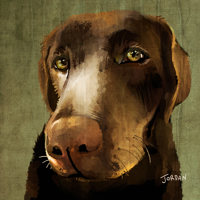 Dog Portrait by Rebecca Jordan Glum