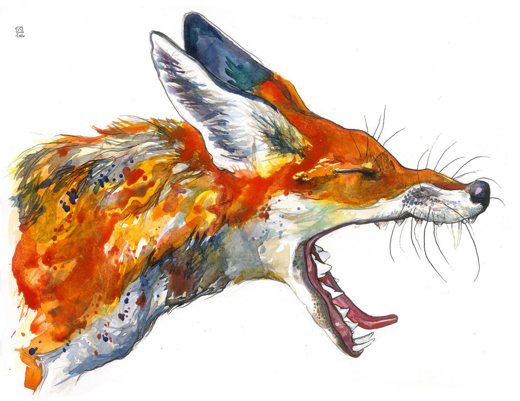 """Fox"" by Janie Stapleton"