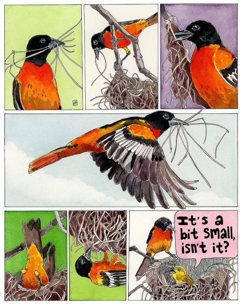Janie Stapleton Comic